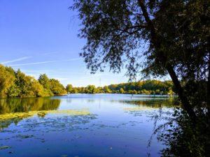 Wasser und Wald laden zum Spaziergang ein.