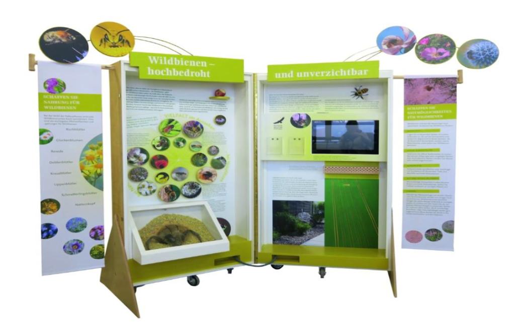 Infotafeln der Wildbienenausstellung.